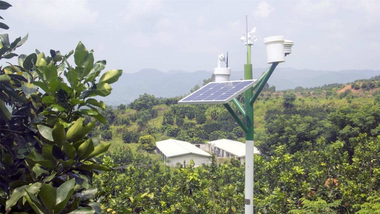 大气候农业CEO易丙洪:农业大数据未来在于基础数据的真实收集-09大数据